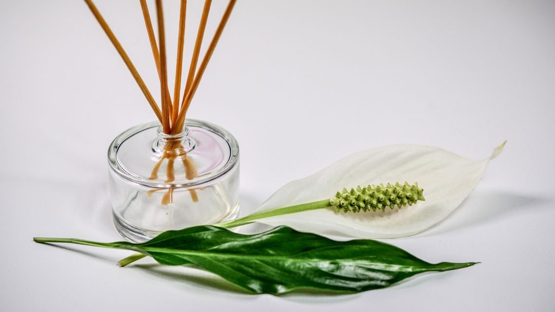 scent-1059419_1920